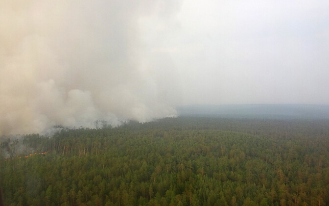 Metsapõleng Krasnojarski krais.