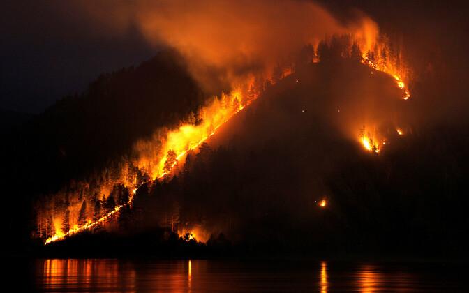 Siberi tulekahjude ulatus küündis üle kahe miljoni hektari.