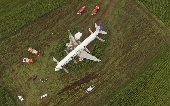 Самолет в кукурузном поле.