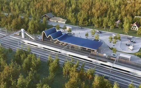 Rail Balticu raudteejaamade vorm on inspireeritud Baltimaade taluarhitektuurist, õigemini selle viilkatustest. Viilkatuse välja venitamisega ja katuseharjale pehmema kurvi andmisega on saadud lainetava katusega nn märgiline tüüphoone.