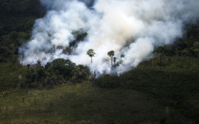 Põleng Brasiilia vihmametsas 2017. aastal, arhiivifoto.
