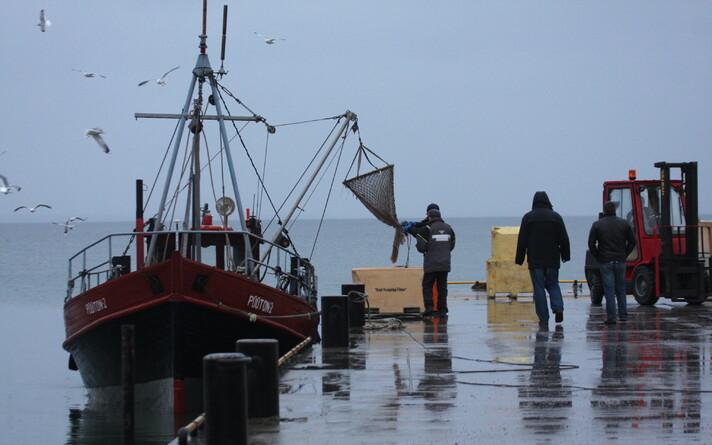 Двигатели рыбацких судов отказываются работать на топливе с биодобавками. Иллюстративная фотография.