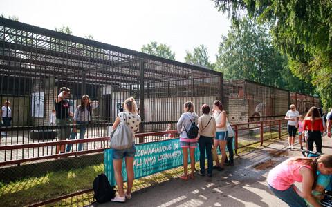 Таллиннскому зоопарку исполнилось 80 лет.