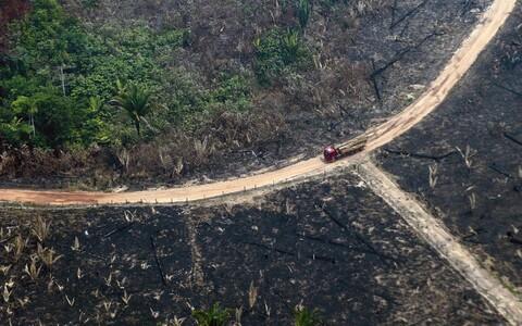 Põlengus laastatud ala Amazonase vihmametsas Boca do Acres Brasiilias
