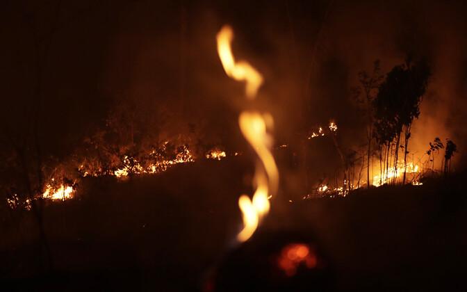 Metsatulekahju Porto Velho linna lähistel.