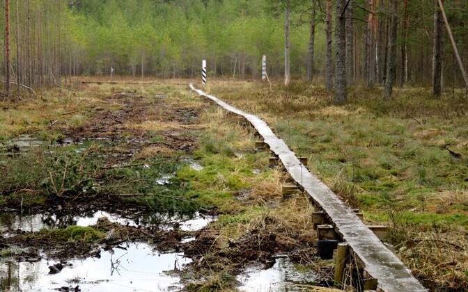 Граница с Россией в южной части Эстонии в начале сентября.