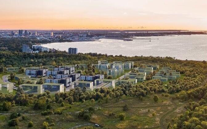 Эскизный проект жилого квартала Лахекалда.