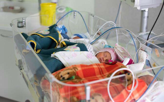 Tallinnas sündisid kolmikud : Otto, Annabel ja Isabel