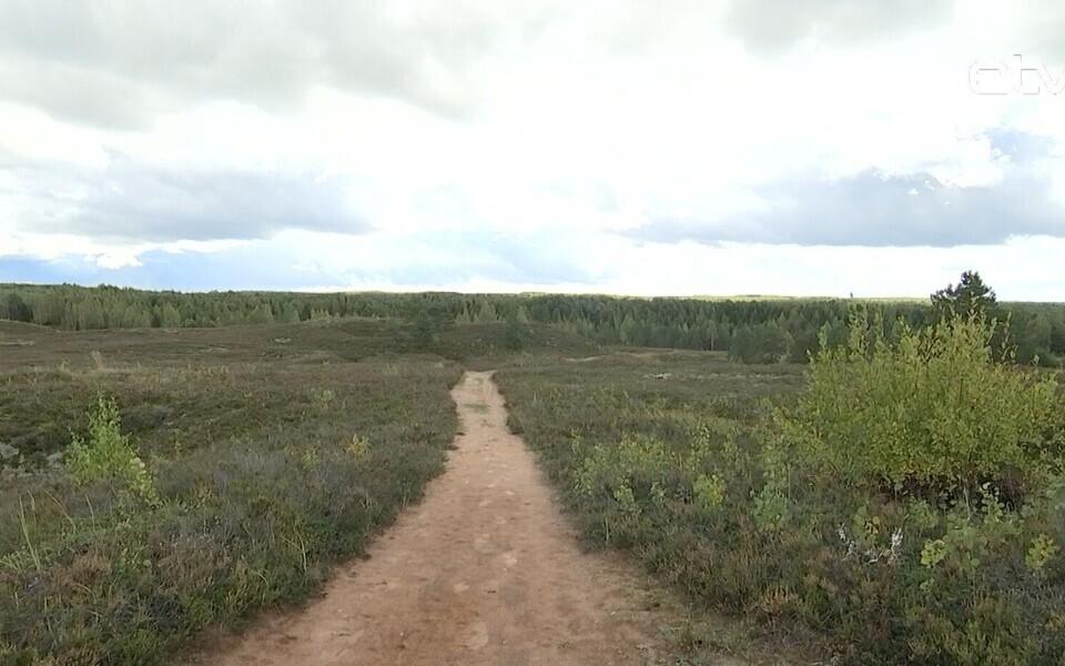Природный заповедник Пыхья-Кырвемаа.