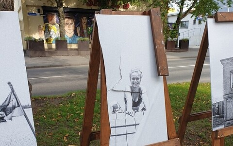 Этим летом уличные выставки в Пыхья-Таллинне также стали объектом внимания вандалов.