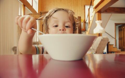 5-aastane laps pühendab päevas söömisele ligikaudu 80 minutit ning eritab selle käigus keskmiselt pool liitrit sülge.