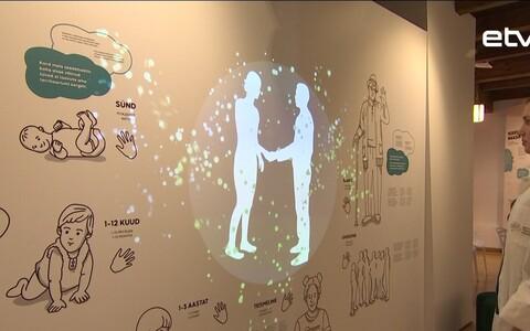 Я, суперорганизм! - новая выставка в Таллиннском музее здравоохранения.