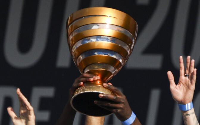 Prantsusmaa liigakarikasaria trofee