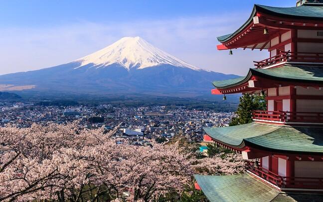 Jaapani kuulsaim ja kõrgeim mägi on 3776 meetri kõrgune Fuji mägi. Mitmed maalikunstnikud on kujutanud mäge kui Jaapani rahva sitkuse sümbolit.