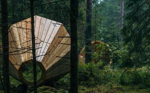 """EKA sisearhitektuuri osakond töötab selle nimel, et kooli lõpetaksid ökoloogiliselt mõtlejad, kes oskavad pakkuda läbilöögivõimelisi lahendusi. Pildil on metsa kõlakoda """"Ruup"""", mis 2015. aastal pälvis Eesti Kultuuri Koja aastaauhinna. Idee Birgit Õigus."""