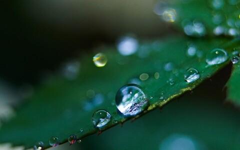 Tuleb välja, et vedelikutilga auramine ei ole nii lihtne, kui algul võib näida.