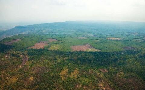 Praegusel ajal on kaetud suur osa Phnom Kuleni platoost tiheda džungliga.