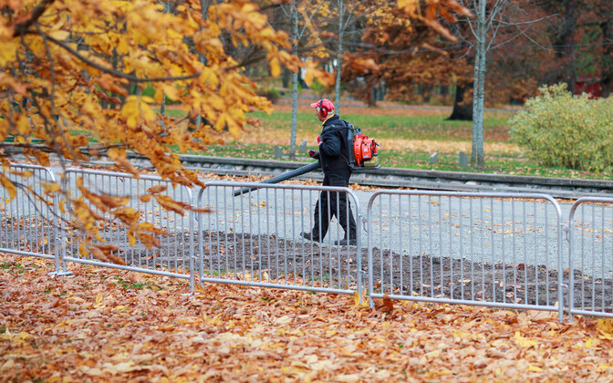 Man using a leaf blower in a park.