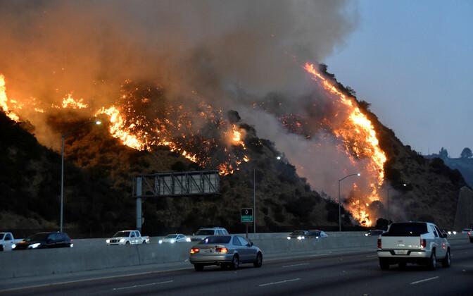 California võimud edastasid maastikupõlengute asjus ajaloolise hoiatuse.