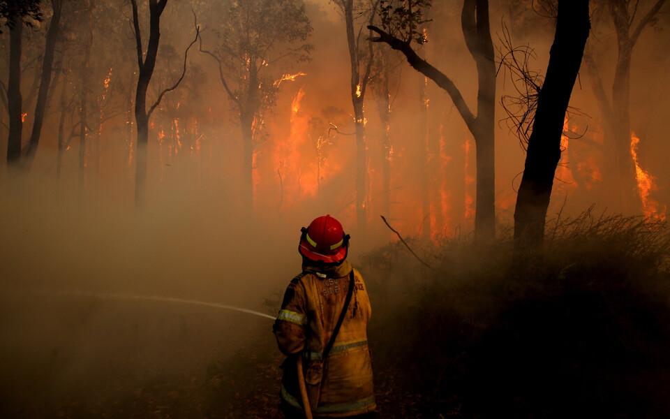 Metsatulekahju Austraalias