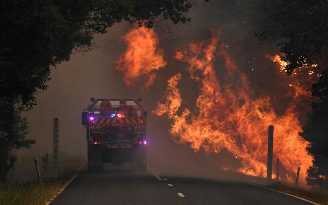 Tulekahju ralli toimumispaiga lähistel lõõmamas.