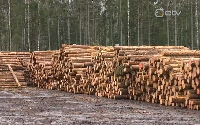 Estonian timber.