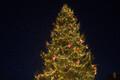 Raekoja platsil avati jõuluturg