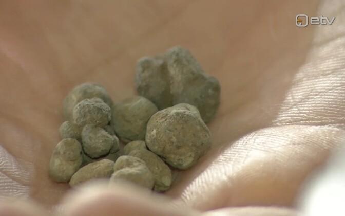 Shale Oil ash pellets.