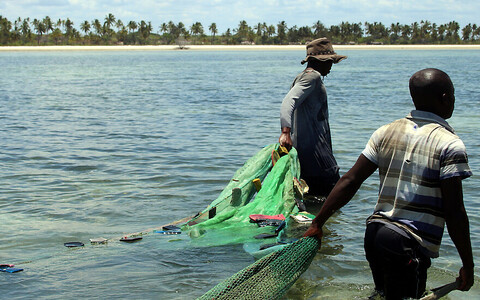 Malaariasääskede vastu mõeldud võrke kasutatakse sageli kalade püüdmiseks.