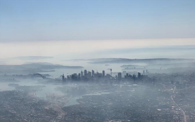 Suitsuvine Sydney kohal.