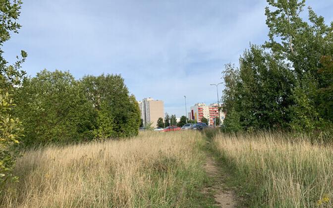 Возможное местоположение дороги Мустакиви теэ в будущем.