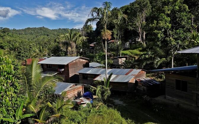 Borneo saar