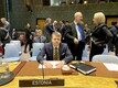 Urmas Reinsalu at the UN Security Council