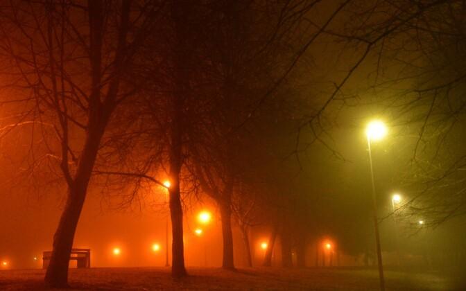 Street lights in fog. Photo is illustrative.