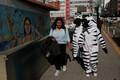 Boliivias Las Pazis on sebrad liikvel