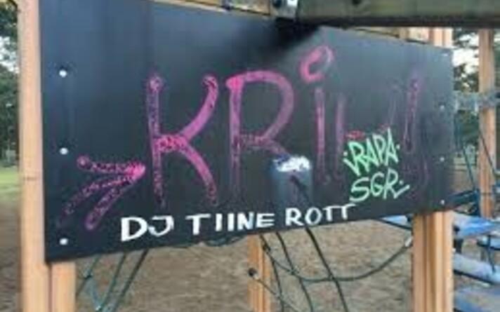 DJ Tiine Rott