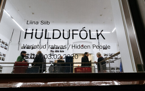"""Liina Siibi näitus """"Huldufólk / Varjatud rahvas"""" Hobusepea galeriis"""
