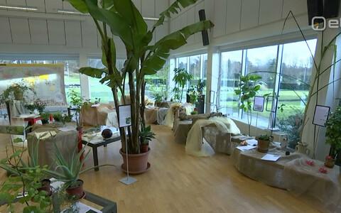 Botaanikaaia näitus