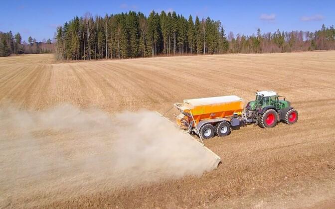Более чем в половине уездов урожай зерновых побил рекорды.