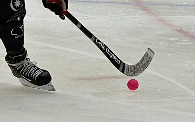 Бенди, или хоккей с мячом.