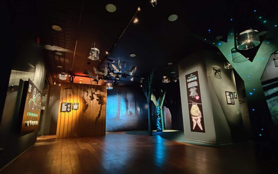 Neljapäevast, 13. veebruarist on Eesti loodusmuuseumis avatud näitus