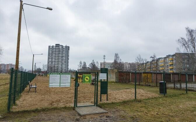 Площадка для выгула собак.