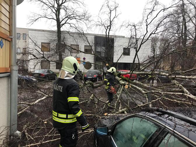 Päästjad on saanud 110 tormiväljakutset