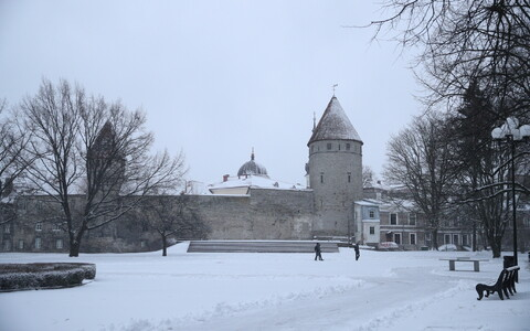 26 февраля впервые этой зимой в Таллинне выпал снег, который не растаял утром.