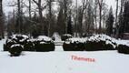 Lumi veebruaris Tihemetsas