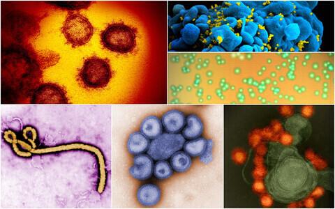 Uus koroonaviirus koos teiste tuntud haigustekitajatega.
