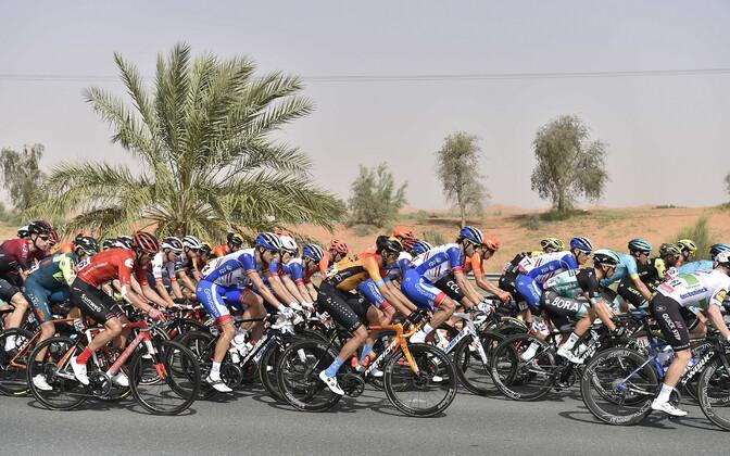 Ratturid Ühendemiraatide velotuuril