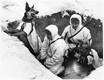 Kui telefonside ei töötanud, kasutas Soome armee teadete edasiandmiseks sidekoeri. Märts, 1940.