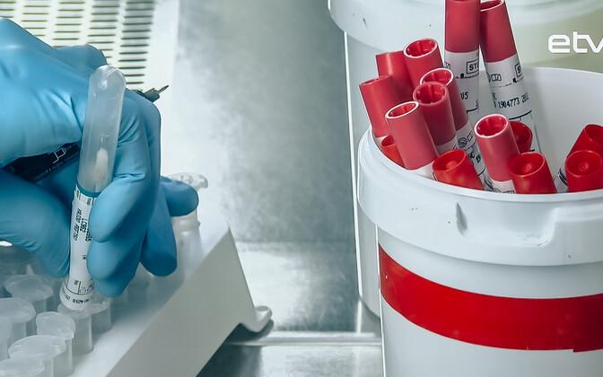 Тестирование на коронавирус ведется в прежнем объеме. Иллюстративная фотография.