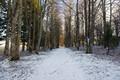 Lumi Saaremaal Orissaares